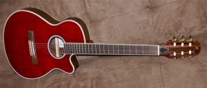 Tanglewood Discovery DBT EC
