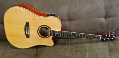 Ashton D40sceq NT Dreadnought Acoustic Electric Cutaway