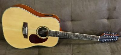 Ashton D25 / 12 NTM 12 String Acoustic Electric