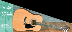 Fender F100 acoustic guitar Pack